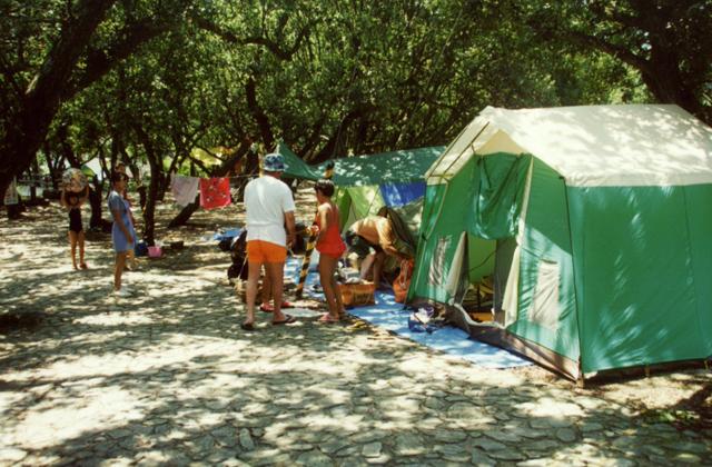 須賀公園キャンプ場