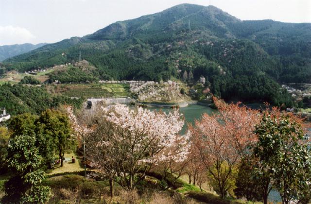 朝霧湖公園
