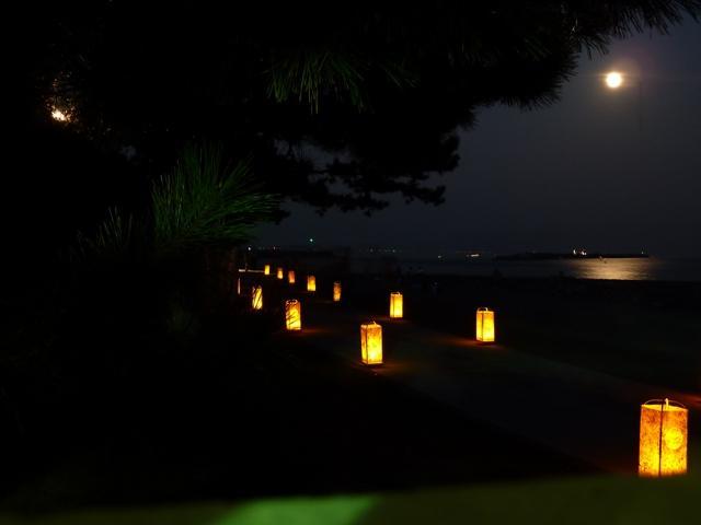 桂浜観月会