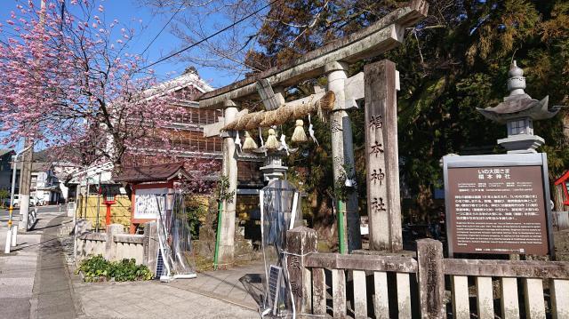 椙本神社(いの大国さま)