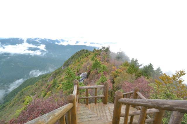 鳥形山森林植物公園