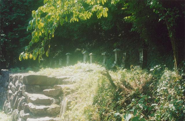 寺田寅彦先祖の墓