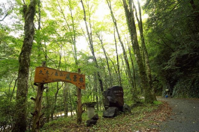 久木の森山風景林