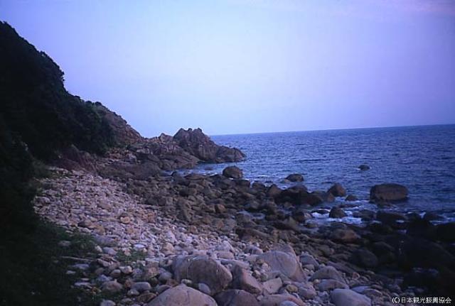 井ノ岬海岸