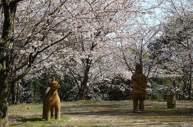 木の丸公園