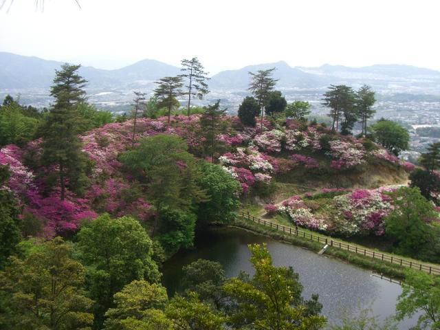 須恵町立皿山公園