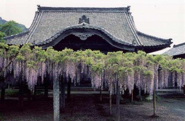 梅岳寺(福岡県新宮町)