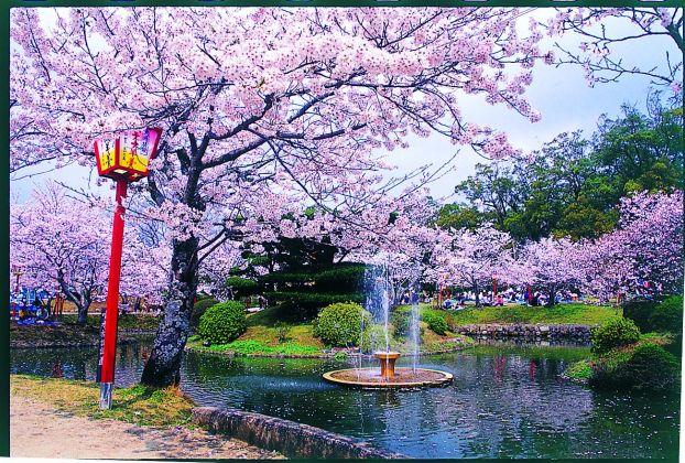 小城公園(庭園)