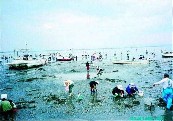 有明海観光遊漁船