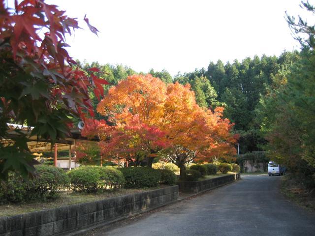 白磁ケ丘公園
