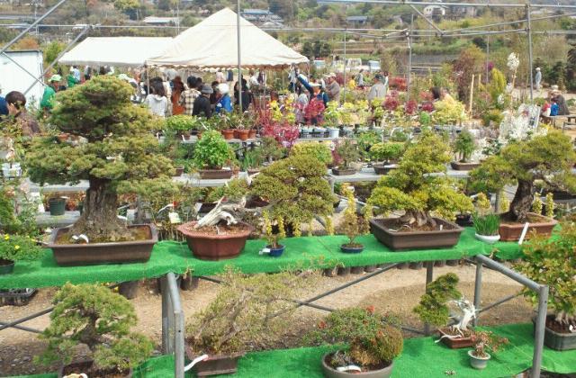 古賀植木祭り