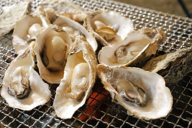 Kujukushima oyster eat oyster festival and winter of Jin★42202ba2212053934
