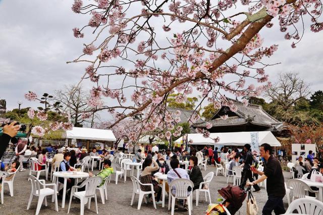 大村桜まつり シュガーロード大村すい~つまつり「さくらカフェ」