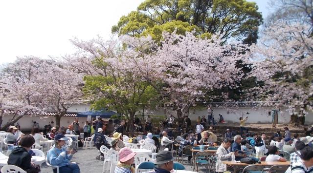 大村桜まつり シュガーロード大村すい~つ祭り「さくらカフェ」