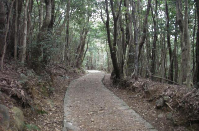 安満岳遊歩道