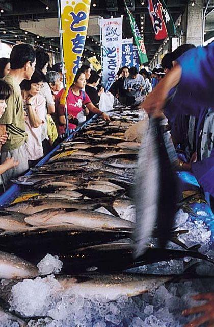 松浦お魚まつり