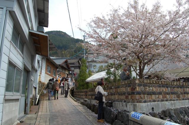 陶郷中尾山 桜陶祭