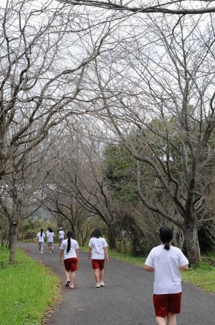 日本一長い運動場