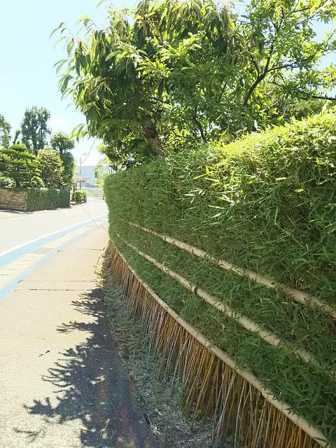 定府の笹垣