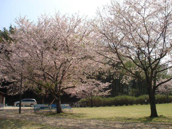 竹迫城跡公園