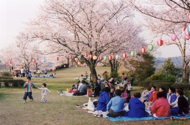 城山公園(熊本県御船町)