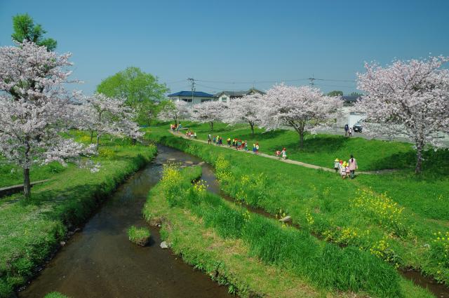 秋津川河川公園