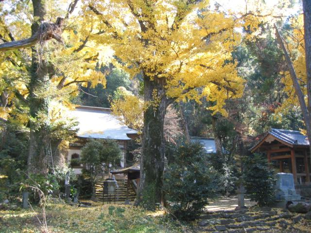 常楽寺(熊本県益城町)