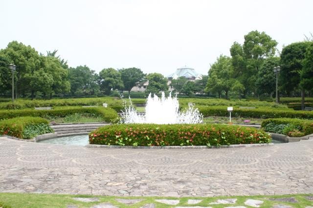 テクノ中央緑地公園