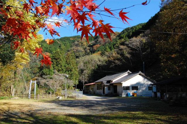 尾寄崎キャンプ場