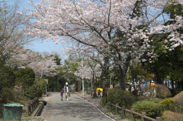 上野丘墓地公園
