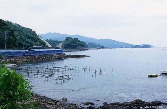 下ノ江海岸