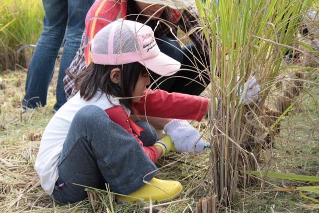 【2021年中止】田染荘収穫祭