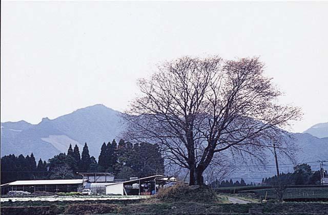 釈迦ヶ岳(宮崎県国富町)