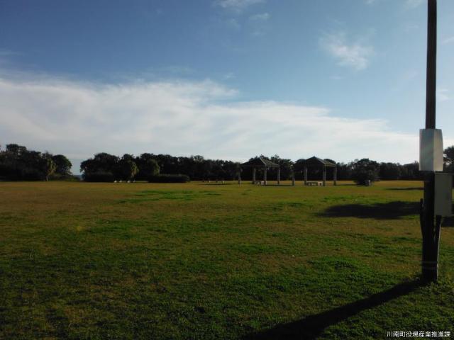 通浜海浜公園
