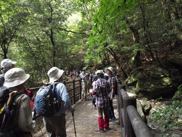 尾鈴県立自然公園ハイキングコース(白滝)