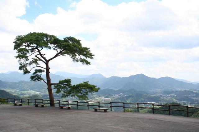 国見ケ丘(展望台)