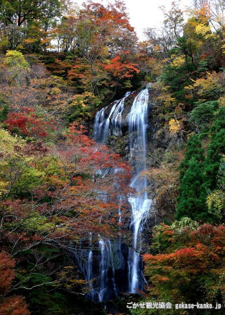 白滝(宮崎県五ヶ瀬町)