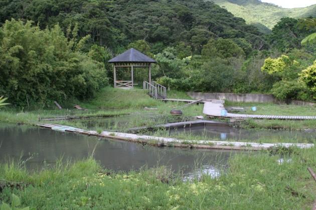 本場奄美大島紬泥染公園