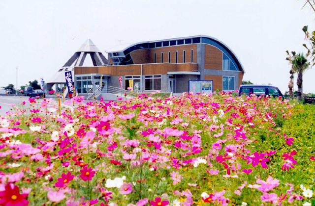 長島温泉センター「椿の湯」
