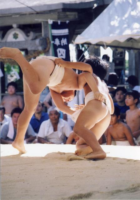 Storehouse Shrine ritual sumo match meet at the same level as four