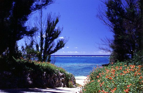 赤崎海岸海水浴場