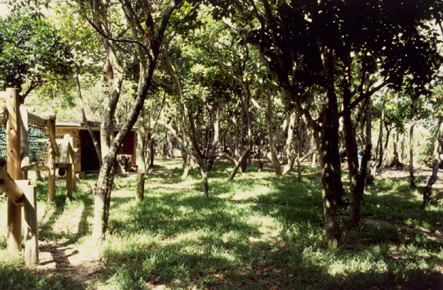 米原キャンプ場
