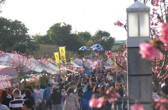 【2021年開催中止】名護さくら祭り