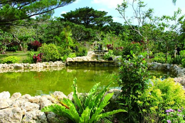Miyakojima Shi Tropical Zone Botanical Garden | Must See Japan  Miyakojima Shi (Japanese Sightseeing Promotion Association) Of The Whole  Country
