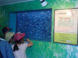 【2021年中止】サケ稚魚体験放流