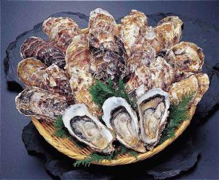 魚貝類料理