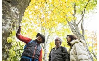 四季のブナ林ガイドウォーク