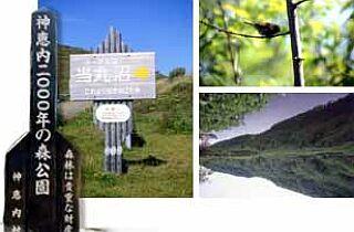 神恵内2000年の森公園