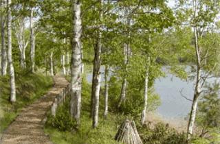 ふうれん望湖台自然公園キャンプ場