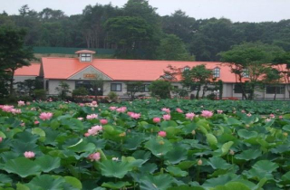 鶴の湯温泉(勇払郡安平町)
